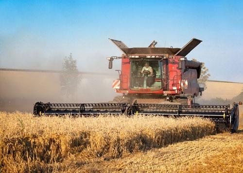 За п'ять років обсяг інвестицій в агросектор України зріс на 65% фото, ілюстрація