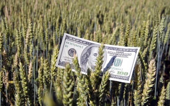 """Українським агрокомпаніям передрекли """"сезон технічних дефолтів"""" фото, ілюстрація"""