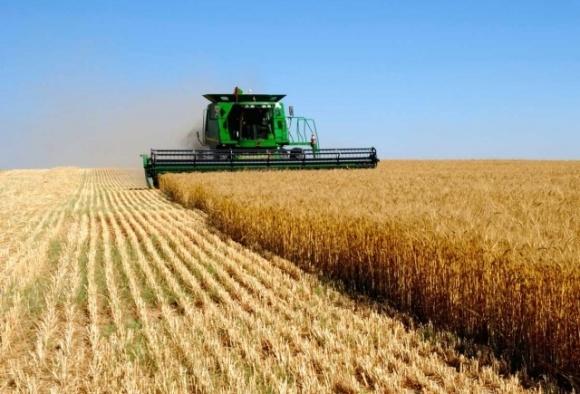 Вызовы для агробизнеса: как кризисы влияют на сырьевые рынки фото, иллюстрация