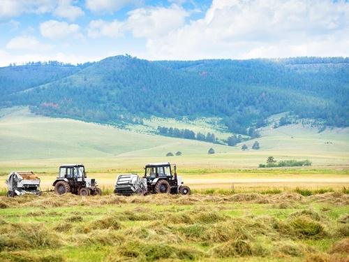 Прогнози розвитку українського агроекспорту у 2019 році, - Андрій Ярмак фото, ілюстрація