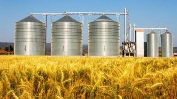 Дніпропетровщина очолила всеукраїнський рейтинг виробників у сільському господарстві фото, ілюстрація