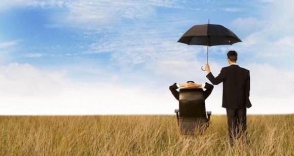 Ринок агрострахування в Україні зростає фото, ілюстрація