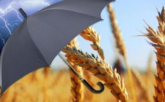 В декабре в Верховную Раду Украины будет внесен законопроект об агростраховании  фото, иллюстрация