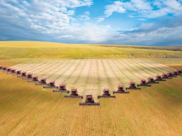 Наибольший вклад по размерам в производство национального продукта сформировали аграрии, — исследование фото, иллюстрация
