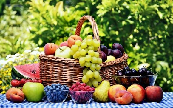 «УКРСАДПРОМ» обеспокоена предвзятым отношением польских фермеров к украинской плодово-ягодной продукции фото, иллюстрация