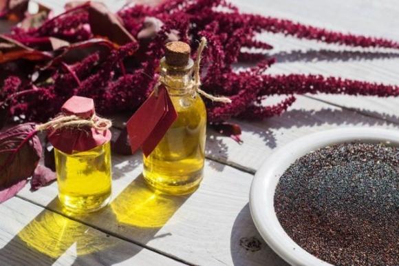 В Україні запустять виробництво соняшниково-амарантової олії фото, ілюстрація
