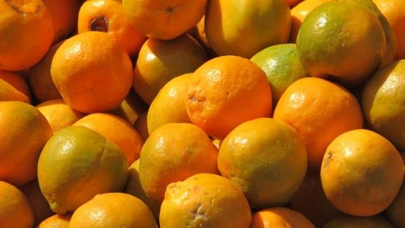 Єгипетські апельсини не подешевшають фото, ілюстрація