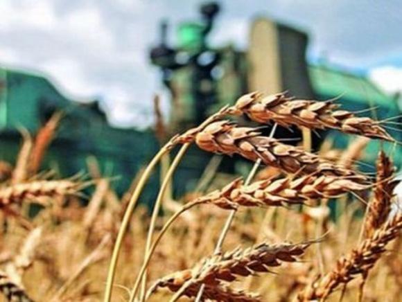 Объем фермерского рынка Украины составляет 70 млрд грн фото, иллюстрация
