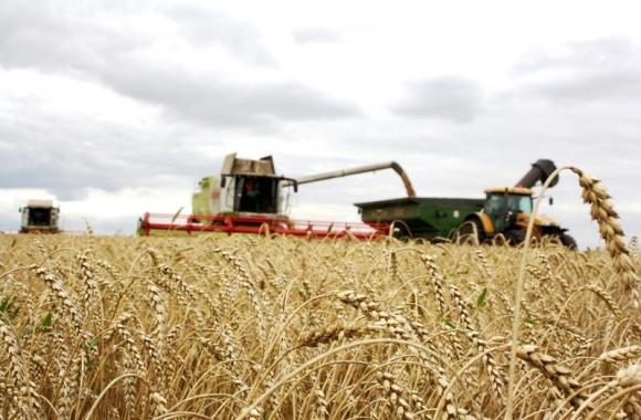 Агробизнес будет основным драйвером мировой экономики фото, иллюстрация
