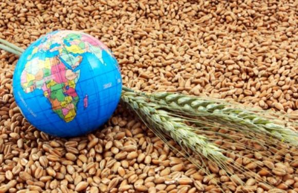 Следующий бум на мировом агрорынке ожидается в конце 20-х фото, иллюстрация