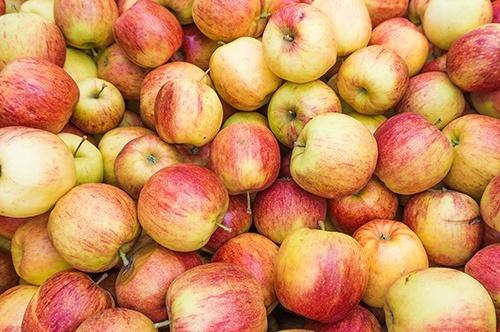 В наступному сезоні врожай промислового яблука в Україні скоротиться, – УПОА фото, ілюстрація