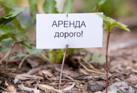 На Полтавщине - одна из самых высоких плат за аренду гектара земельного пая фото, иллюстрация