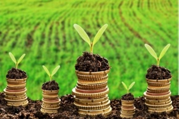 Фермеры и агрохолдинги могут платить 10-20 тысяч в год за аренду гектара фото, иллюстрация