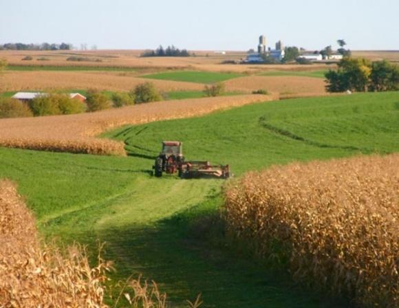 Арендовать государственные сельхозземли становится дороже фото, иллюстрация