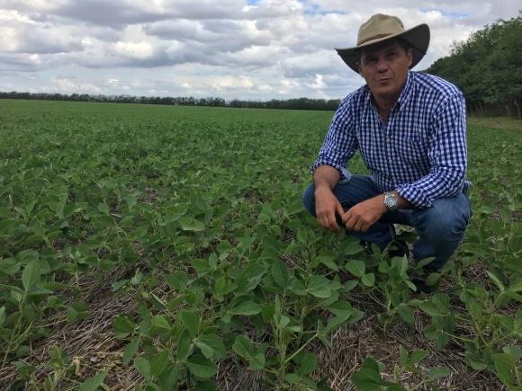 Аргентина подняла экспортные пошлины на сою и зерновые фото, иллюстрация