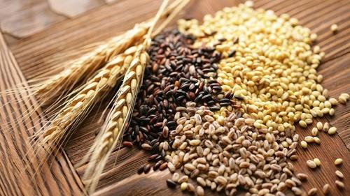 На тлі достатньої пропозиції на ринку зернових в 2018/19 році, виробництво пшениці в 2019 році знову збільшується фото, ілюстрація