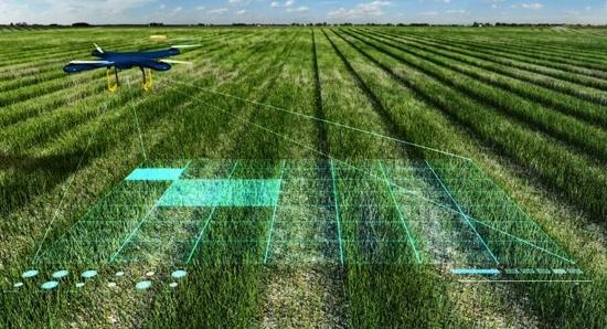 Искусственный интеллект следит 95% полей Agricom Group фото, иллюстрация