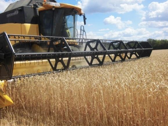 Минэкономики прогнозирует падение темпов роста аграрного сектора почти до нуля фото, иллюстрация