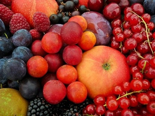 Врожай плодів та ягід в Україні в 2019 році може скоротитися на чверть через погодні умови фото, ілюстрація
