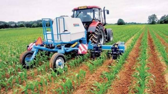 Агрохимпром способен обеспечить Украину только азотными удобрениями фото, иллюстрация