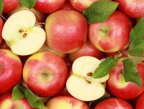 Цієї зими Україна експортувала яблука до 18 країн світу фото, ілюстрація