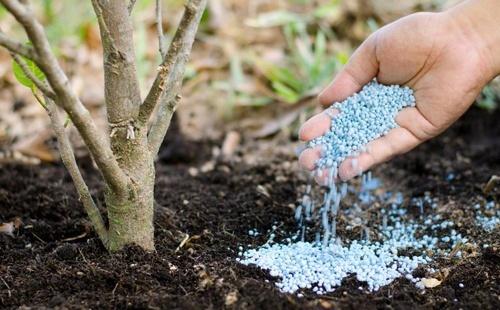 Імпорт азотних добрив в Україну перевищує експорт в 7.5 разів - експерти фото, ілюстрація