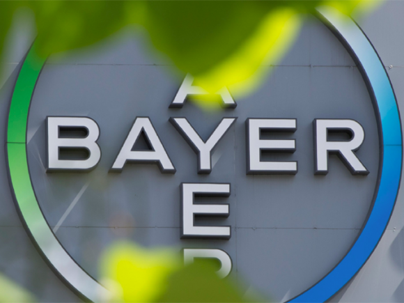 Bayer запускает онлайн-ресурс для продажи зерна фото, иллюстрация
