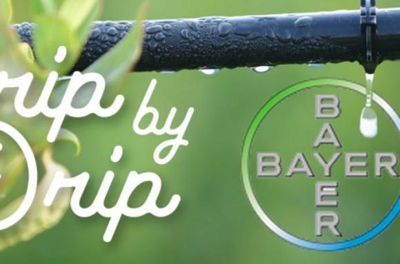Bayer AG и Netafim запустят новую систему капельного орошения фото, иллюстрация