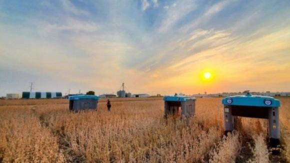 Материнская компания Google разработала уникальных роботов для фермеров фото, иллюстрация