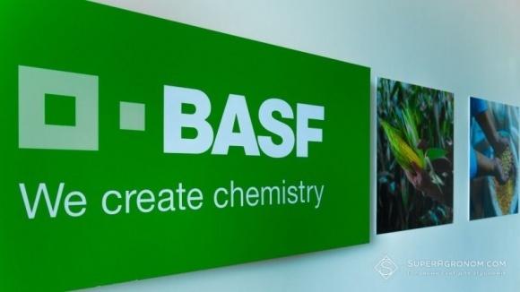 BASF організувала стажування для студентів та випускників профільних агровузів фото, ілюстрація