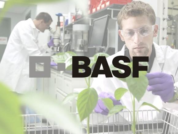 BASF расширяет производство инокулянтов фото, иллюстрация