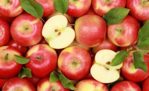 У Британії почали продавати українські яблука фото, ілюстрація