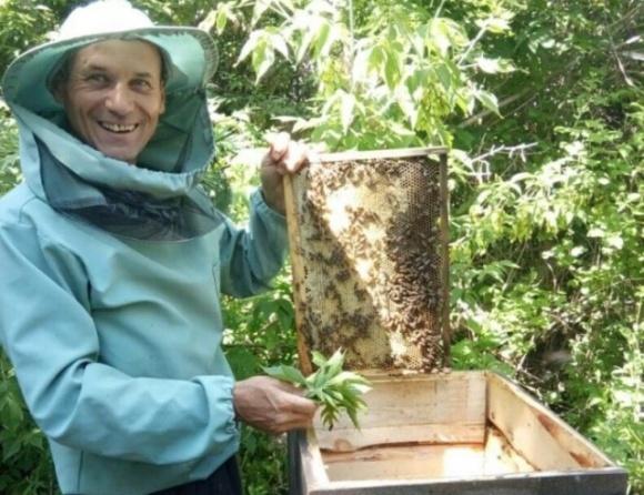 Бджоляр на Луганщині розвиває пасіку та лікує бджіл травами фото, ілюстрація