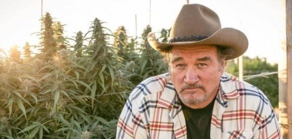 Голливудский актер Джеймс Белуши стал «конопляным» фермером фото, иллюстрация