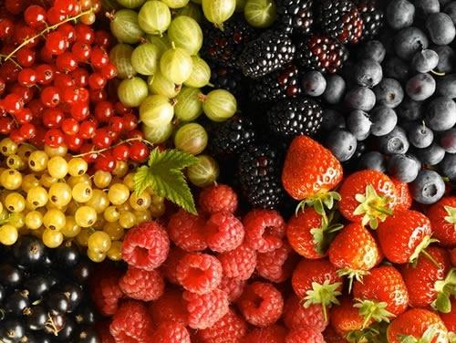 Как Украине правильно использовать рост спроса на органическую ягоду? фото, иллюстрация