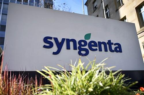 По программе «МетеоЗахист» компании Syngenta аграрии получили 44 млн₴ фото, иллюстрация
