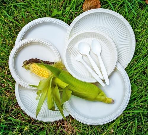 В Украине изобрели технологию производства одноразовой посуды из кукурузы фото, иллюстрация