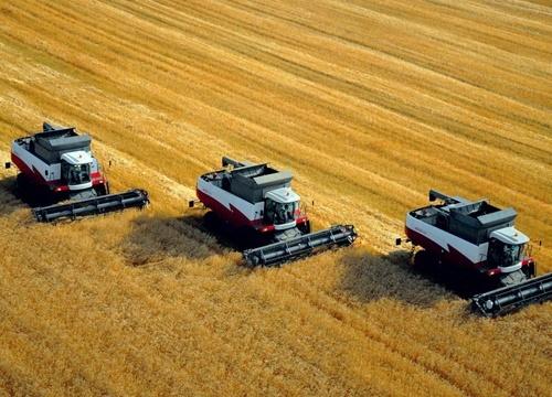 В Николаевской области обмолочено 6% площадей ранних зерновых фото, иллюстрация