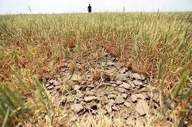 У Гідрометцентрі попереджають про складні умови для аграріїв Півдня України фото, ілюстрація