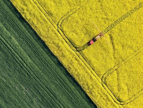 Кусто-Агро купила підприємство AgroGeneration фото, ілюстрація