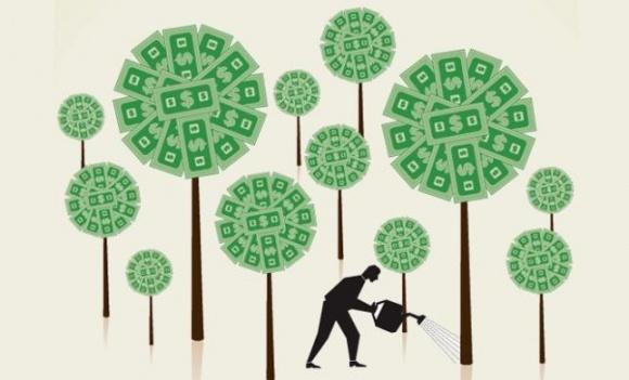 3 проекта победителей AgroChallenge нашли своих инвесторов фото, иллюстрация