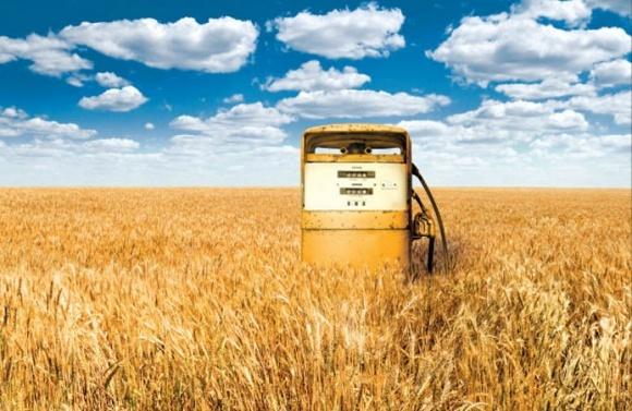 Украина может обеспечить Европу аграрным биотопливом фото, иллюстрация