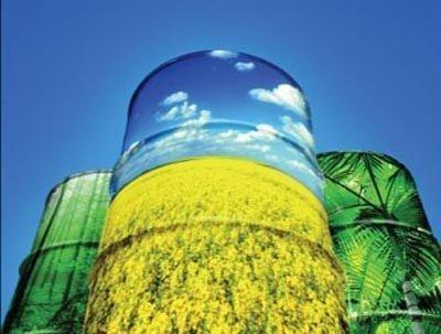 Станет ли Украина новым крупным экспортером биодизеля в ЕС? фото, иллюстрация
