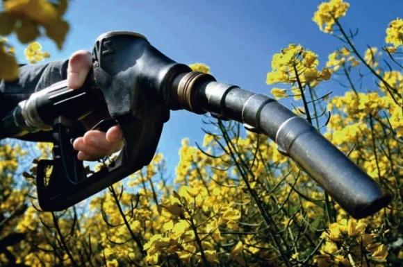 Названо ключові переваги використання біоетанолу в якості палива фото, ілюстрація