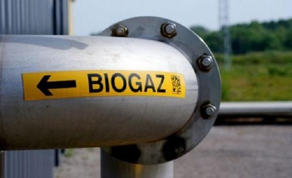 В Україні реалізовано близько 100 біоенергетичних проектів по заміщенню газу в АПК фото, ілюстрація