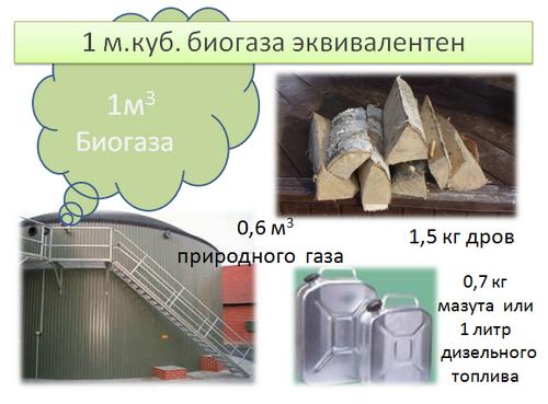 На Тернопольщине построят биогазовый комплекс фото, иллюстрация