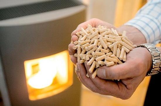 Для реализации проектов с биомассой подходят все регионы Украины фото, иллюстрация
