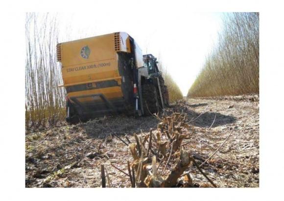 Фермеров научат собирать и реализовыть биомассу от обрезки садов и виноградников фото, иллюстрация