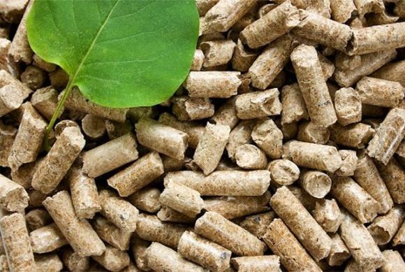 В Украине производителей энергии из биотоплива хотят освободить от налога за выбросы CO2 фото, иллюстрация