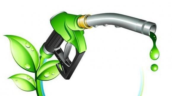 В Парламенте зарегистрирован законопроект о стимулировании производства биотоплива фото, иллюстрация